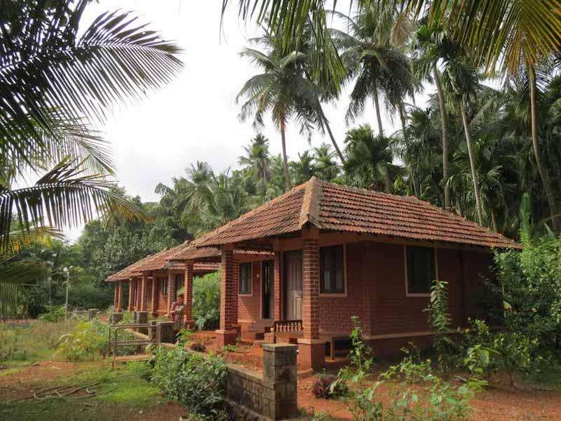 Приглашаю поехать вместе со мной в Индию на курс Панчакармы
